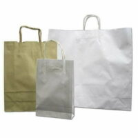Paper Carry Bags CTN/100